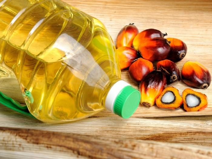Что такое пальмовый олеин