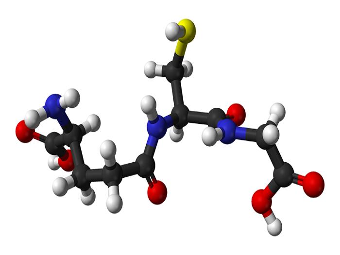 Фермент пероксидазы