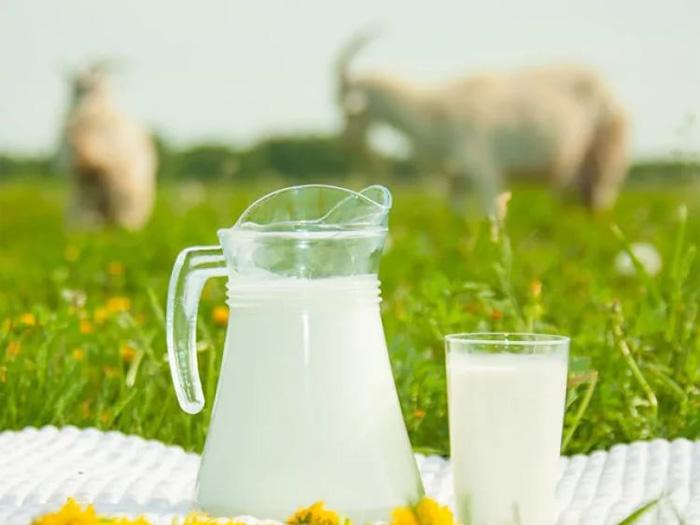 Козье молоко для мужчин