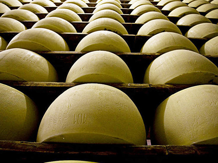 Круги сыра на полках
