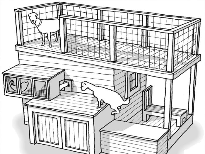 Схема многоуровневого козлятника
