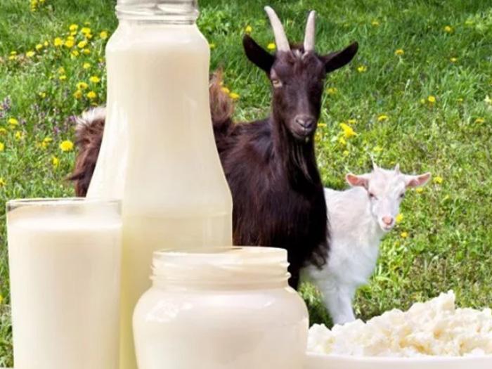При каких заболеваниях рекомендуют молоко
