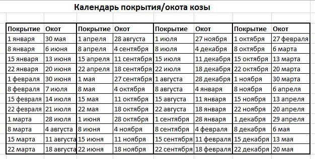 Календарь в виде таблицы