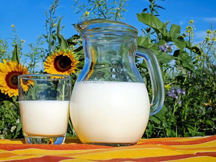 Молоко на фоне подсолнухов